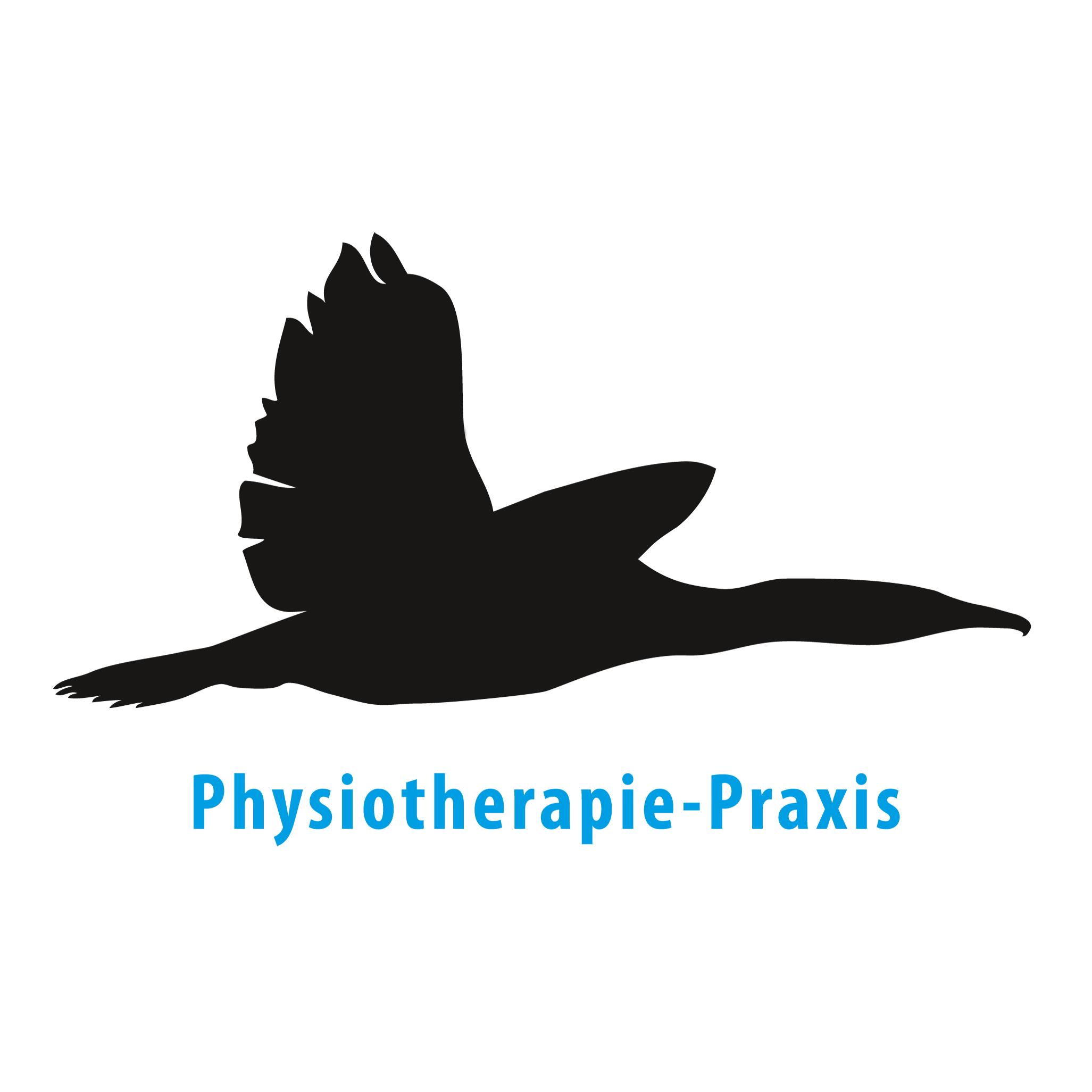 9_physiotherapie